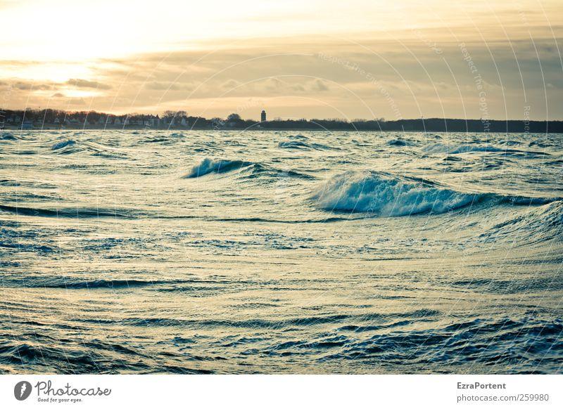stare at the Sun Himmel Natur blau Wasser weiß Ferien & Urlaub & Reisen Sonne Sommer Meer Winter Wolken schwarz Ferne gelb Landschaft Herbst
