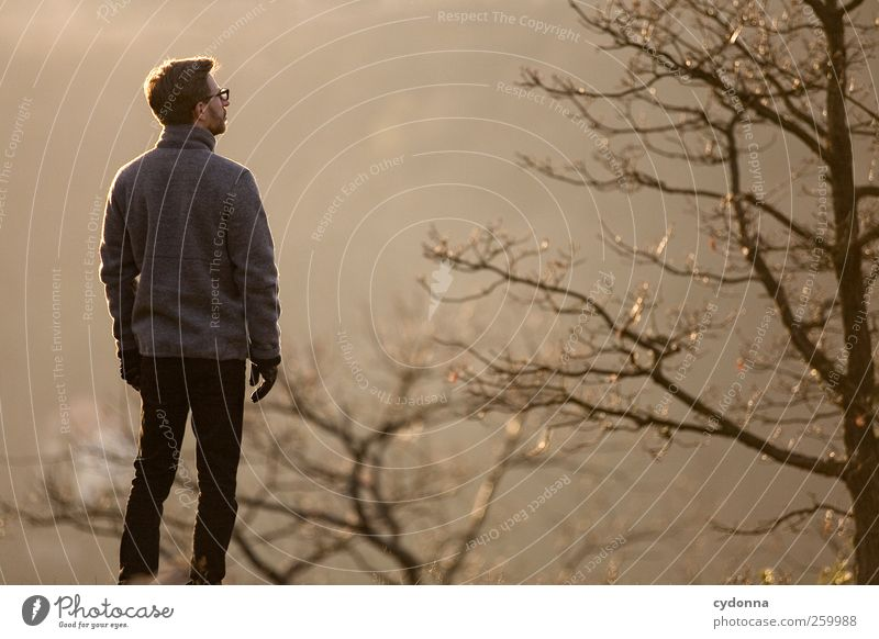 Kalte Sonne Mensch Natur Jugendliche Baum Winter ruhig Erwachsene Wald Ferne Erholung Umwelt Landschaft Leben Freiheit träumen Zeit