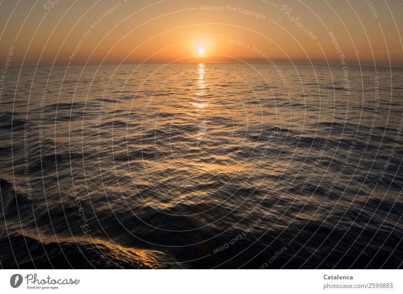 Erinnerung Natur Sommer blau Wasser Landschaft Meer Leben Umwelt Bewegung orange Stimmung Horizont gold Wellen glänzend Kraft