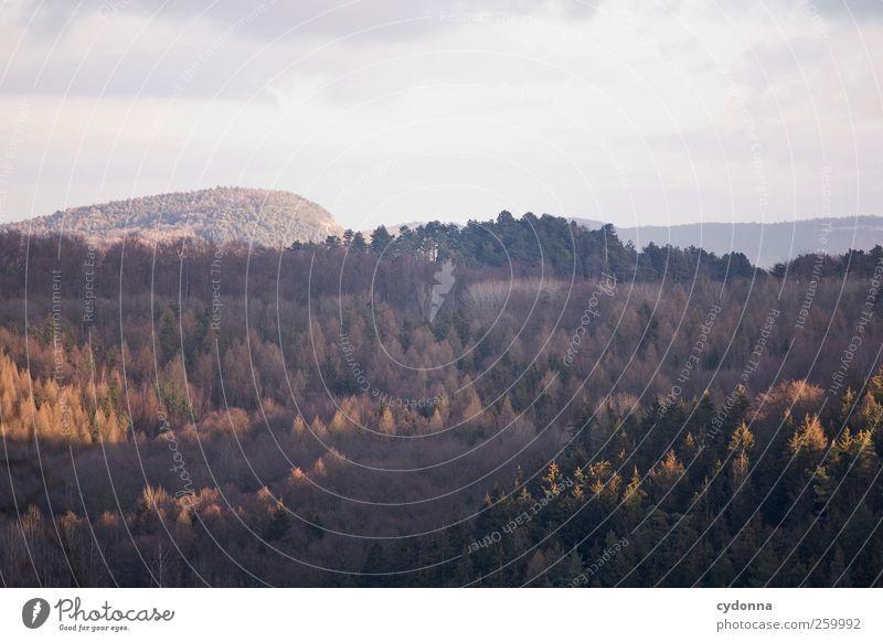 Ruhe Himmel Natur schön Erholung Einsamkeit Landschaft ruhig Ferne Winter Berge u. Gebirge Umwelt Zeit Freiheit Horizont träumen Idylle
