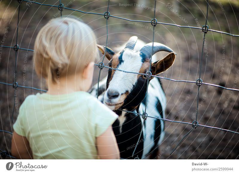wer ist wohl neugieriger Kind Mensch Tier Mädchen Lifestyle Leben Junge Zufriedenheit Kindheit lernen niedlich beobachten Coolness Neugier Wohlgefühl harmonisch