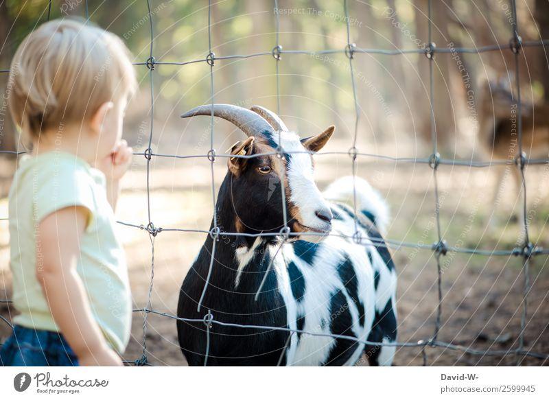 was ist denn das? Kindererziehung Mensch maskulin Kleinkind Mädchen Junge Kindheit Leben 1 1-3 Jahre Natur Sommer Herbst Schönes Wetter Tier beobachten Neugier