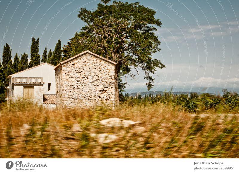 vorbeigerauscht I Natur Baum Ferien & Urlaub & Reisen Haus Ferne Umwelt Landschaft Freiheit Wärme Ausflug Geschwindigkeit Tourismus Reisefotografie