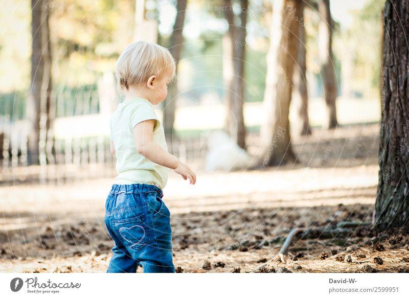 Kleinkindalter Mensch maskulin feminin Kind Mädchen Junge Leben 1 1-3 Jahre Umwelt Natur Sommer Herbst Schönes Wetter Baum Wald beobachten gehen Waldboden