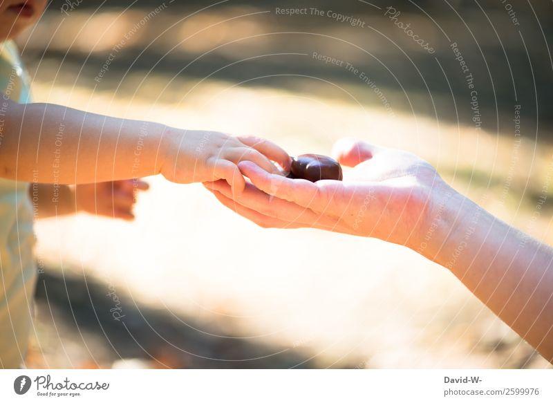 was ist das? Kind Mensch Natur Hand Mädchen Erwachsene Leben Herbst Umwelt Liebe feminin Familie & Verwandtschaft klein Kommunizieren Schönes Wetter lernen