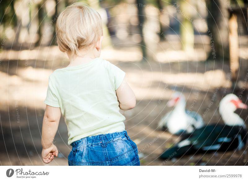 neugierig? Freude Mensch Kind Kleinkind Mädchen Junge Kindheit Leben 1 1-3 Jahre Umwelt Natur Tier Vogel beobachten Ente Neugier entdecken niedlich
