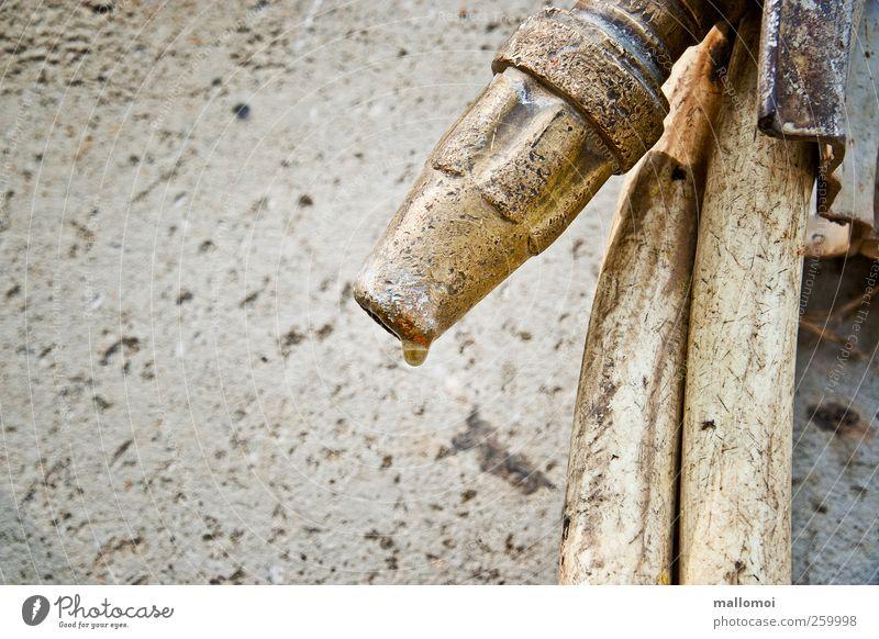 inkontinent Wasser Wand grau braun gold Wassertropfen 50 plus Gartenarbeit Schlauch urinieren Arbeit & Erwerbstätigkeit Gärtnerei Gartenschlauch tropfend Wasserschlauch