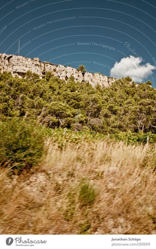 vorbeigerauscht IV Himmel Natur Ferien & Urlaub & Reisen blau grün Baum Landschaft Ferne Reisefotografie Umwelt Freiheit braun Felsen Feld Geschwindigkeit