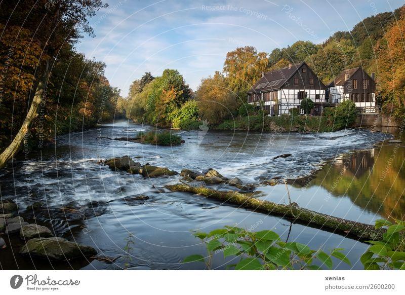Wipperkotten - berühmter Kotten an der rauschenden Wupper im Herbst bei schönem Wetter Schönes Wetter Flussufer Bach Solingen Nordrhein-Westfalen Fachwerkhaus