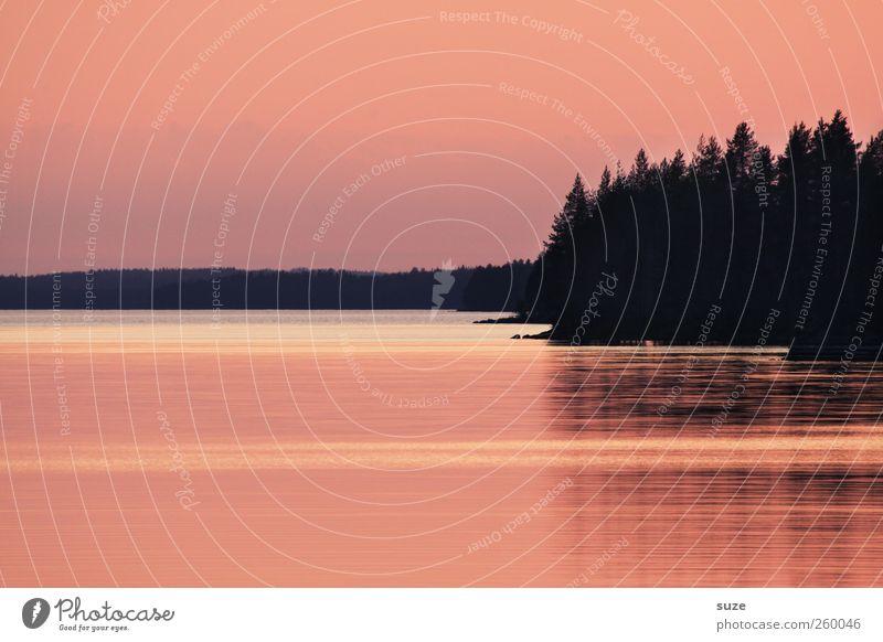 Stiller Moment Himmel Natur Wasser rot ruhig Wald Erholung Umwelt dunkel See Luft Stimmung Wetter Horizont Zufriedenheit Romantik