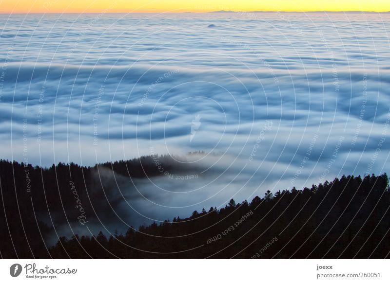 Wellen Luft Himmel Wolken Horizont Sonnenaufgang Sonnenuntergang Schönes Wetter Wald Berge u. Gebirge Unendlichkeit hell hoch oben schön blau gelb schwarz ruhig