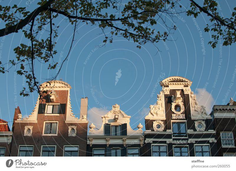 sonnig Himmel Sonne Sonnenlicht Schönes Wetter Baum Amsterdam Niederlande Hauptstadt Altstadt Haus Traumhaus Architektur Fassade Dachgiebel Idylle ruhig