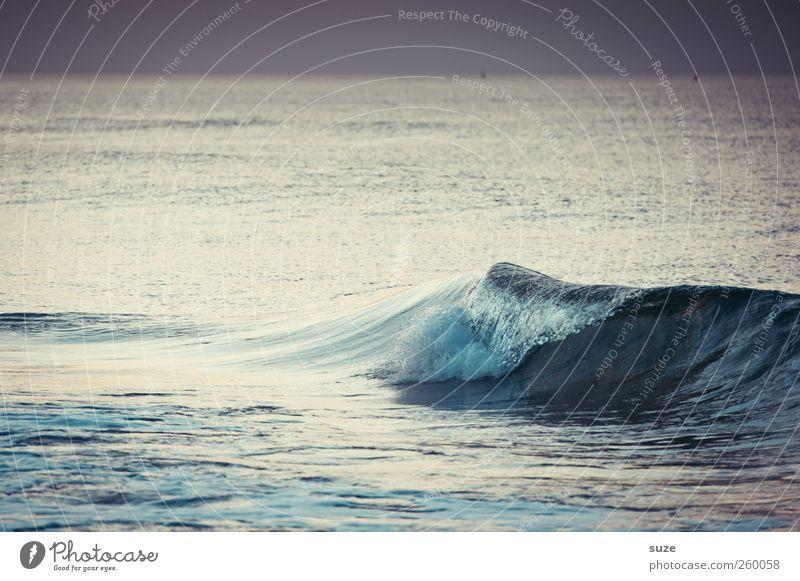 Ostseewellchen Natur blau Wasser Umwelt kalt Landschaft grau Küste Wetter Horizont Wellen wild Urelemente Ostsee Wasseroberfläche