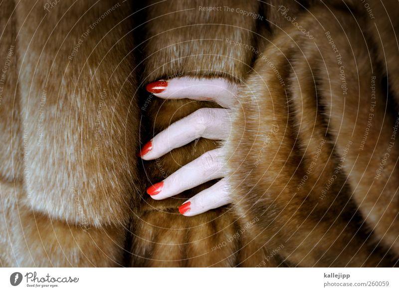 tierhaarallergie Mensch Frau schön Hand rot Erwachsene feminin Stil Lifestyle Haare & Frisuren Mode elegant 45-60 Jahre Bekleidung Finger Fell