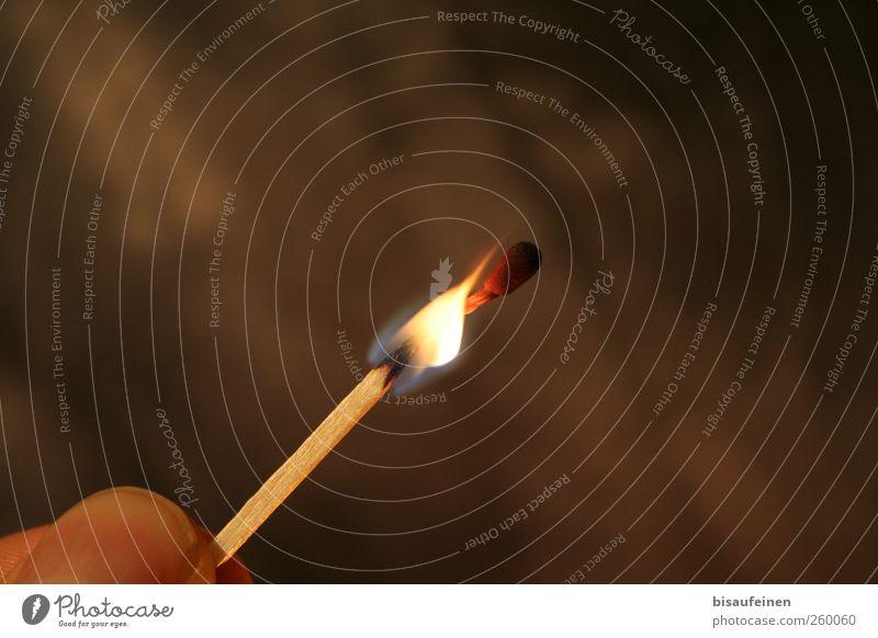 Höllenfeuer Grill Rauchen Spielen Romantik gefährlich Schüchternheit Respekt Feuer Streichholz Flamme Fingernagel Holz brennen glüht Farbfoto Innenaufnahme
