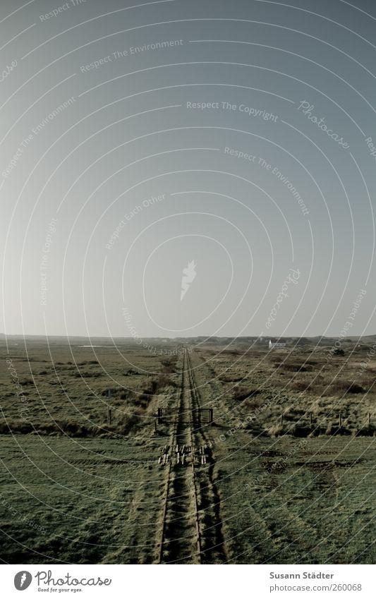 platt | Spiekeroog Einsamkeit Landschaft Gras Feld Sträucher Unendlichkeit Weide Nordsee Schönes Wetter Gleise flach Dürre Wolkenloser Himmel Schienennetz