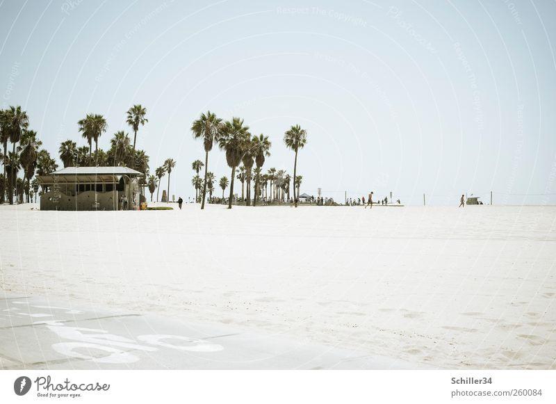 Sunny California Himmel Wasser Ferien & Urlaub & Reisen Sonne Meer Sommer Strand Ferne Sand Horizont Schwimmen & Baden Ausflug Tourismus Schönes Wetter Palme