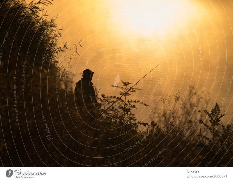 Morgenstund hat Gold im Mund Freizeit & Hobby Angeln Ferien & Urlaub & Reisen Tourismus Ausflug Freiheit Camping Sommer Landwirtschaft Forstwirtschaft Mann