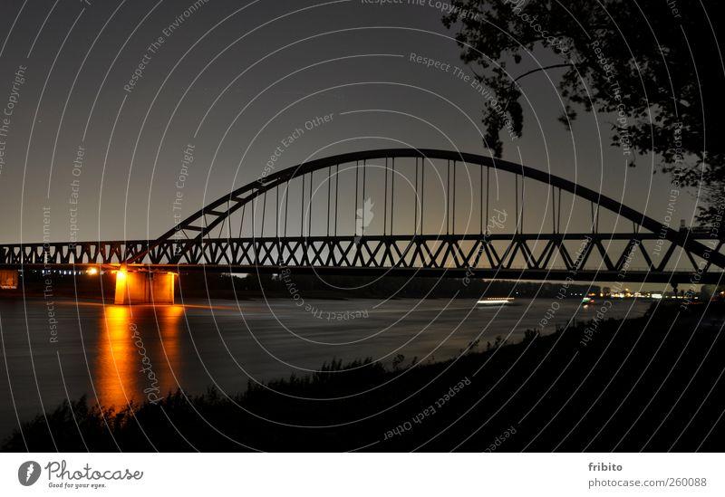Der Rhein Städtereise Architektur Landschaft Tier Urelemente Wasser Himmel Nachthimmel Sträucher Flussufer Düsseldorf Stadt Brücke Bauwerk Bahnfahren Eisenbahn