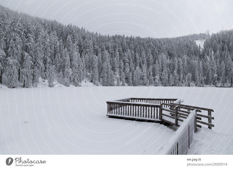 bald Ferien & Urlaub & Reisen Ausflug Winter Schnee Winterurlaub Umwelt Natur Landschaft Eis Frost Wald Hügel Berge u. Gebirge Schwarzwald Hornisgrinde See