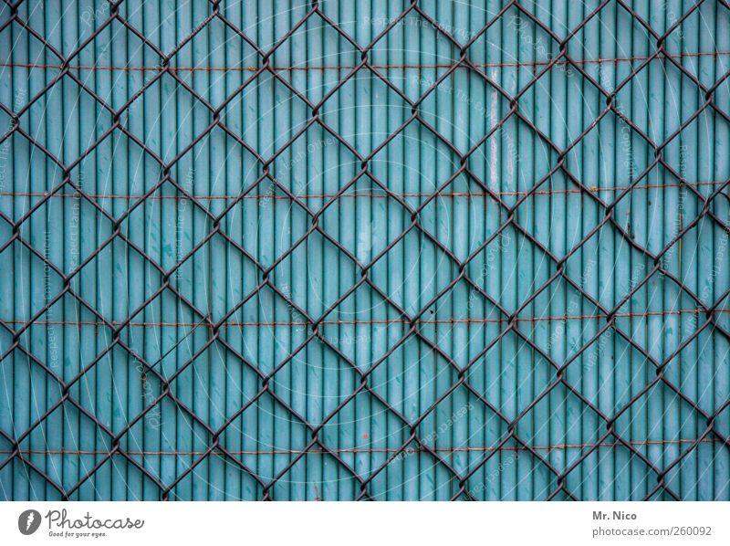 dicht blau Freiheit Garten Fassade geschlossen Sicherheit Neugier Kunststoff Netz Zaun Grenze Gesellschaft (Soziologie) Barriere Sichtschutz Grundstück eingeengt