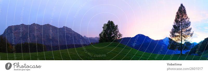 Abend bei Bizau, Vorarlberg Natur Landschaft Himmel Sonnenaufgang Sonnenuntergang Baum Alpen Berge u. Gebirge Gipfel blau grau grün violett orange rosa