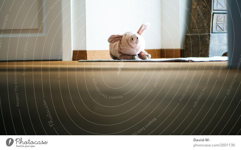 mein Kuscheltier Spielen Häusliches Leben Wohnung Kinderzimmer Kindererziehung Mensch Baby Kindheit Kunst beobachten Stofftiere Tier Ferkel niedlich spionieren