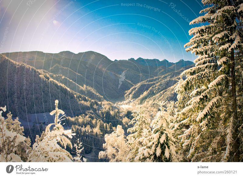 Winter Natur blau kalt Berge u. Gebirge Gefühle Schnee gehen Zufriedenheit Freizeit & Hobby Wetter wandern Fröhlichkeit genießen Klima Schönes Wetter