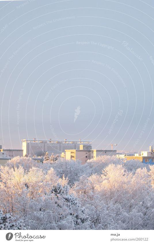 Am Fenster 2 Wolkenloser Himmel Winter Schönes Wetter Schnee Stadt kalt blau gelb weiß Farbfoto Gedeckte Farben Außenaufnahme Menschenleer Textfreiraum oben