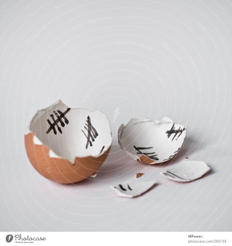vorbei die tage des dotterlebens Lebensmittel Ei ausrutschen Eierschale Ausbruch kaputt Hühnerei Küken Ostern Bruchstück Freiheit Selbstständigkeit Linie zählen