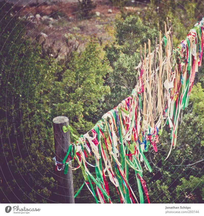 ein Fest Natur grün Ferien & Urlaub & Reisen Ferne Landschaft Freiheit Feste & Feiern Ausflug Abenteuer Tourismus Reisefotografie Stoff Kultur Fahne Tor