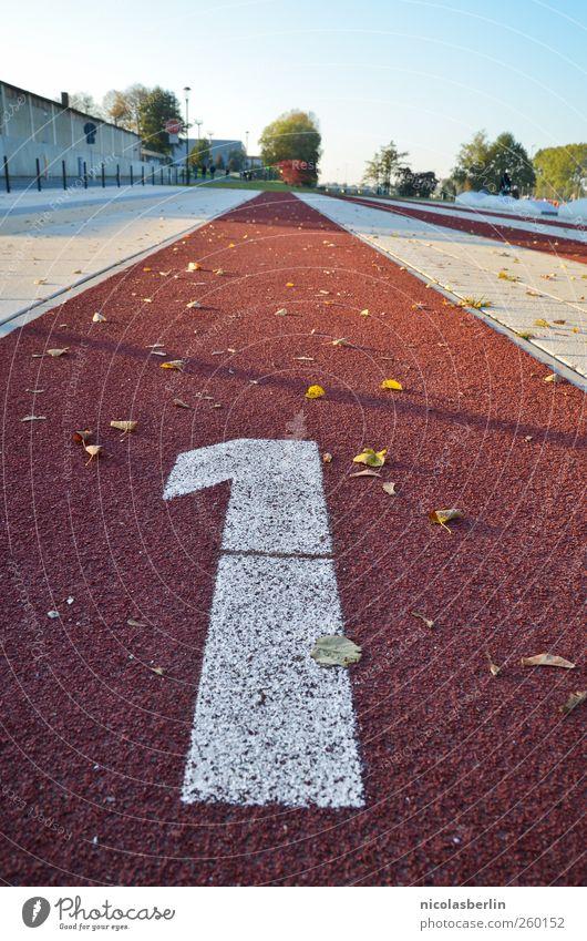 366 Freizeit & Hobby Ausflug Sport Leichtathletik Sportler Preisverleihung Erfolg Joggen Sportveranstaltung Rennbahn Menschenleer Mauer Wand Schriftzeichen