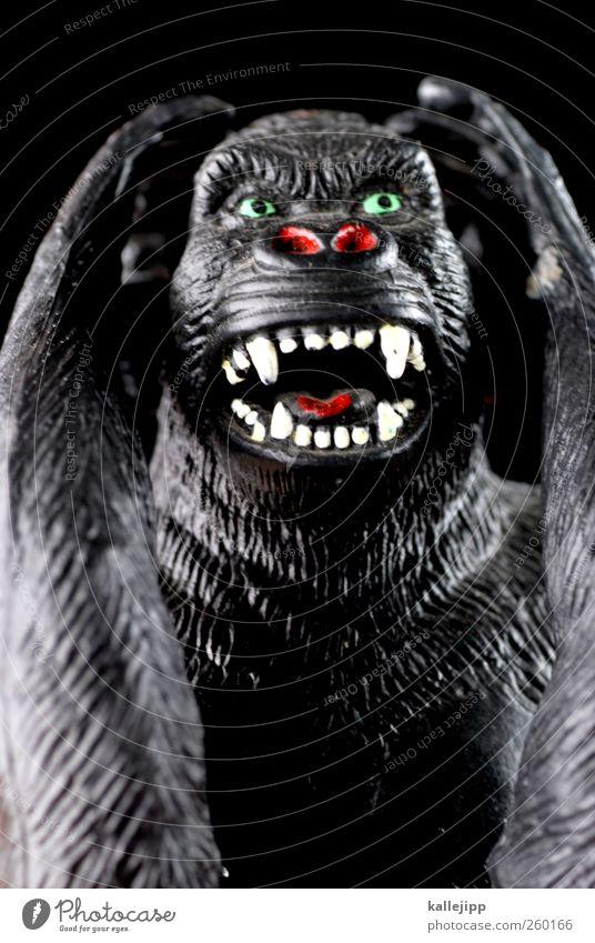 nichts hören Tier Wildtier 1 Zeichen Kommunizieren Gehörsinn Sprichwort Sinnesorgane Affen Gorilla Statue Spielzeug plastikspielzeug Plastikfigur Fell Zähne
