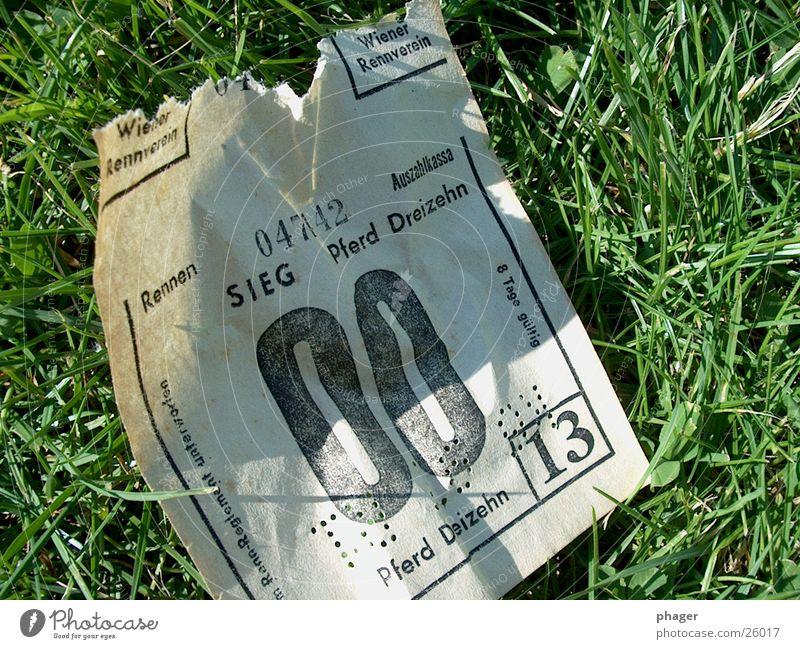 war ja klar … Quote Wette 13 leer Pferd Pferderennen Galopprennen Sportveranstaltung verlieren Glücksspiel wegwerfen wertlos Hoffnung Wiese Gras Erfolg