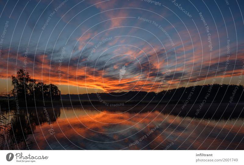Sonnenaufgang über dem See Umwelt Natur Landschaft Wasser Himmel Wolken Sonnenuntergang Herbst Schönes Wetter Wald Seeufer ästhetisch natürlich blau gelb orange