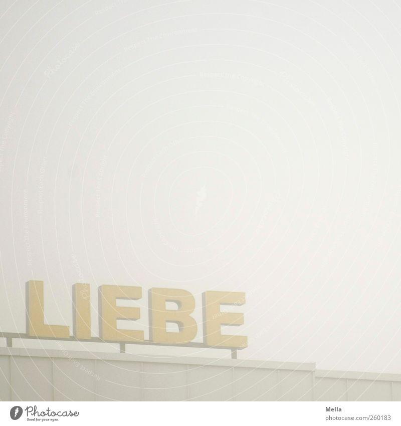 ... für alle Liebe Umwelt Gefühle grau Gebäude Luft Nebel Schriftzeichen Hoffnung trist Dach Wunsch Sehnsucht Typographie Optimismus