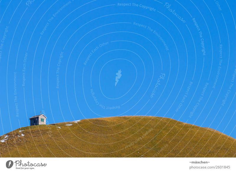 Hütte auf dem Hügel Natur Landschaft Himmel Wolkenloser Himmel Frühling Herbst Wetter Schönes Wetter Schnee Gras Wiese Alpen Berge u. Gebirge blau grün