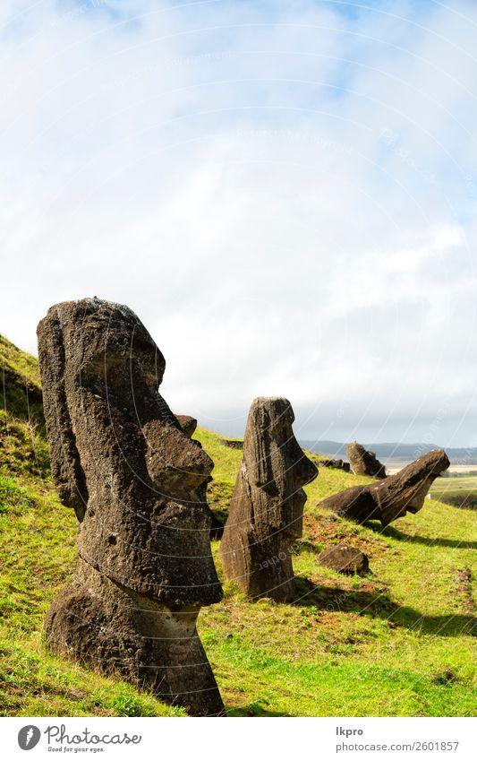 mysteriuuos muai statue symbol einer alten kultur Gesicht Ferien & Urlaub & Reisen Insel Ostern Kunst Kultur Natur Park Felsen Denkmal Stein historisch