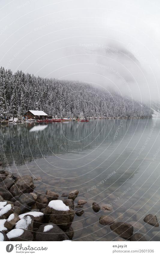 Eiszeit Ferien & Urlaub & Reisen Tourismus Ausflug Winter Schnee Winterurlaub Natur Landschaft Nebel Frost Wald Hügel Felsen Berge u. Gebirge Seeufer Lake Luise