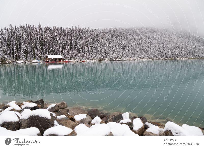 Paddelwetter? Ferien & Urlaub & Reisen Natur Landschaft Wald Winter kalt Schnee Tourismus See Felsen Ausflug Nebel Idylle Abenteuer Klima Seeufer