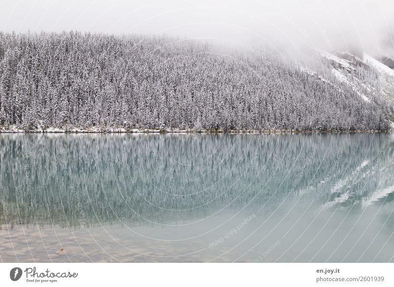 --> Ferien & Urlaub & Reisen Ausflug Winter Schnee Winterurlaub Berge u. Gebirge Natur Landschaft Nebel Feld See Erholung Idylle kalt Klima ruhig Symmetrie