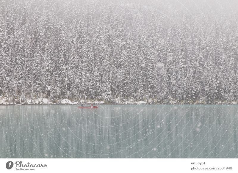 Verkehrte Welt | Schnee im September Freizeit & Hobby Ferien & Urlaub & Reisen Tourismus Ausflug Abenteuer Freiheit Expedition Winter Winterurlaub Natur