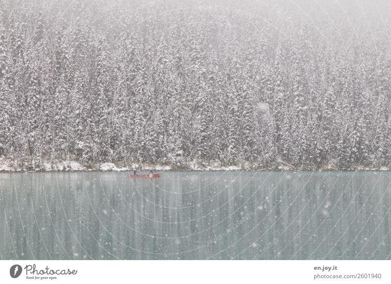 Verkehrte Welt | Schnee im September Ferien & Urlaub & Reisen Natur Landschaft ruhig Wald Winter kalt Tourismus Freiheit See Ausflug Freizeit & Hobby Eis Idylle