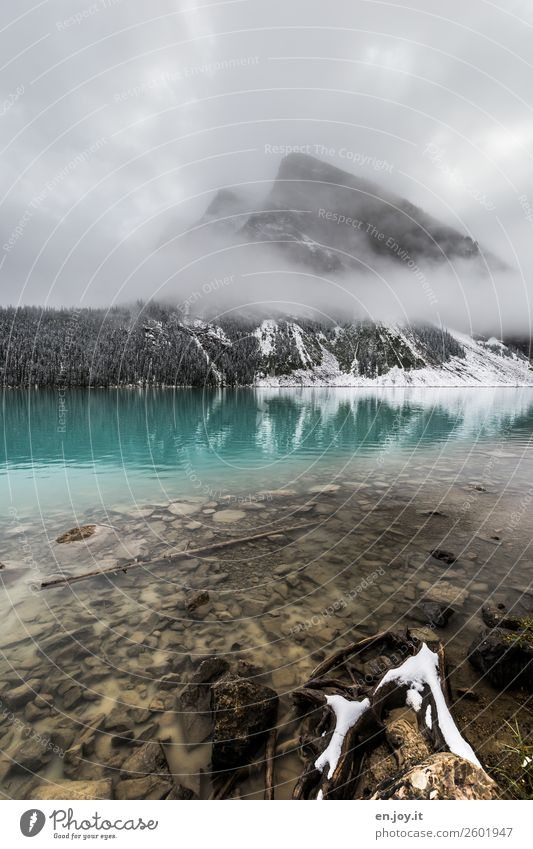 verschleiert Ferien & Urlaub & Reisen Natur Landschaft Winter Berge u. Gebirge kalt Schnee Freiheit See Felsen Ausflug Nebel Idylle Klima Sauberkeit Seeufer