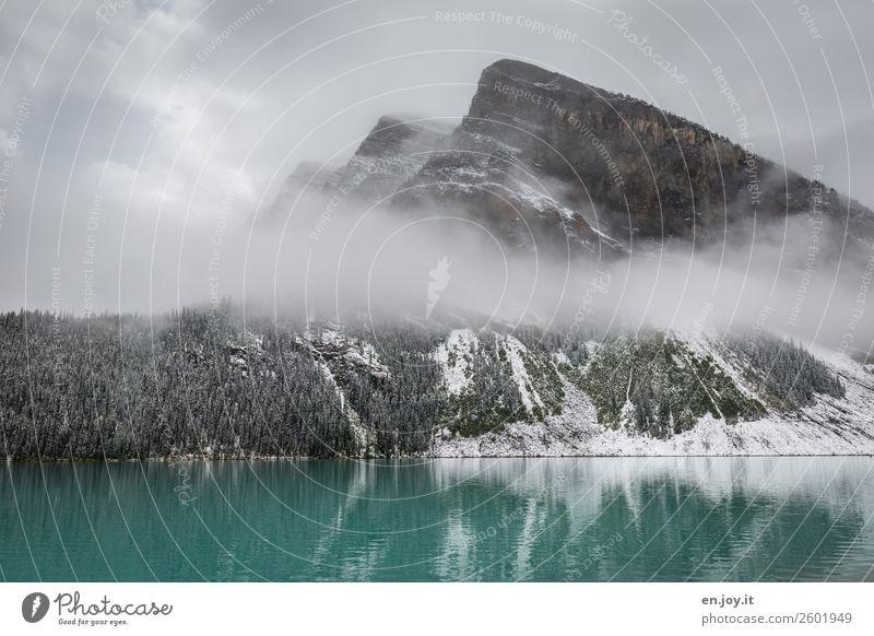 tiefhängend Ferien & Urlaub & Reisen Ausflug Winter Schnee Winterurlaub Berge u. Gebirge Natur Landschaft Wolken schlechtes Wetter Nebel Eis Frost