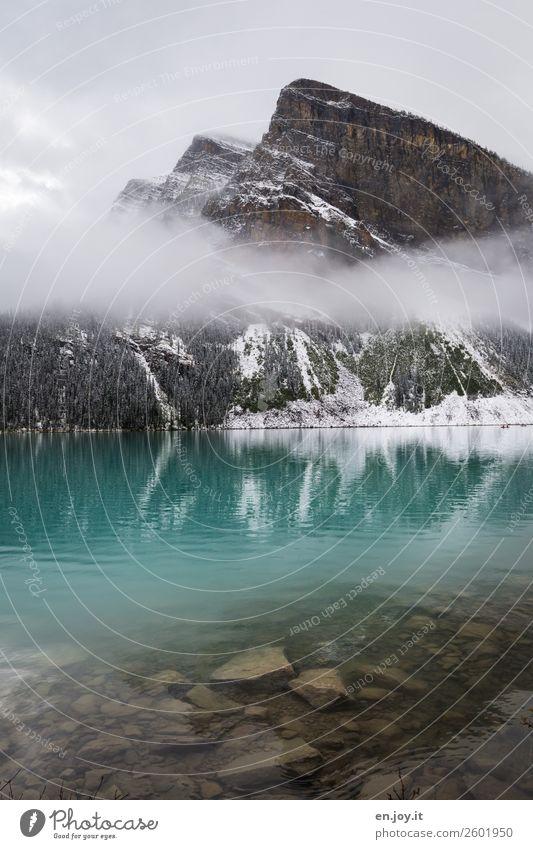 Türkis Ferien & Urlaub & Reisen Ausflug Winterurlaub Berge u. Gebirge Natur Landschaft Urelemente Nebel Felsen Rocky Mountains See Lake Luise türkis Abenteuer