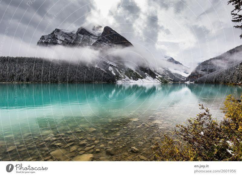 Lake Louise Ferien & Urlaub & Reisen Natur Landschaft Erholung Wolken ruhig Berge u. Gebirge kalt Tourismus Freiheit See Ausflug Freizeit & Hobby Nebel Idylle