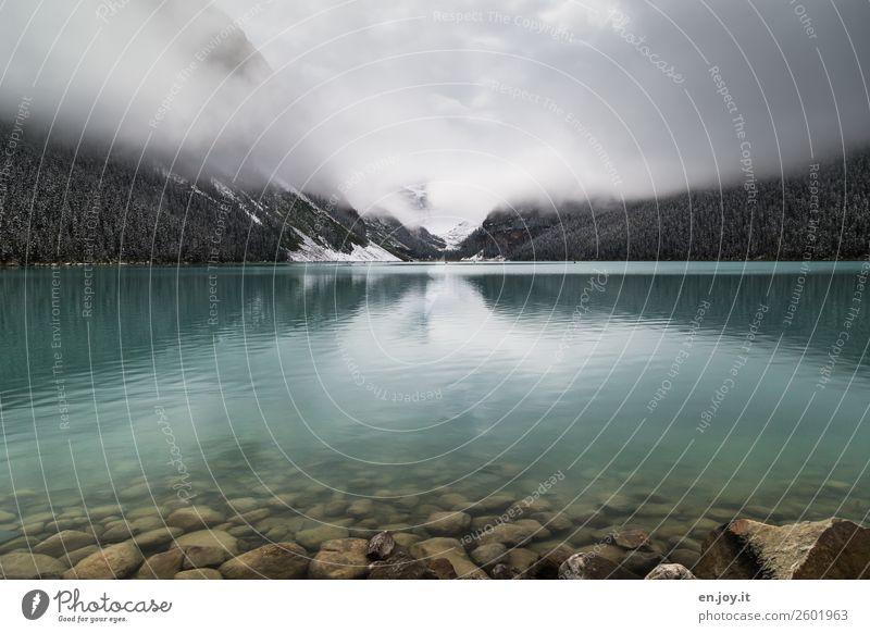 Verhangen Ferien & Urlaub & Reisen Tourismus Ausflug Abenteuer Ferne Natur Landschaft Winter Nebel Felsen Berge u. Gebirge Gletscher Seeufer Lake Luise kalt