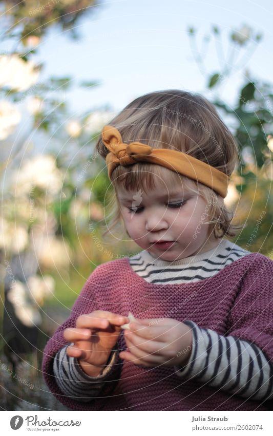 Rosenbeet Mädchen Stirnband feminin Kleinkind 1 Mensch 1-3 Jahre Natur Sommer Herbst Schönes Wetter Garten Pullover Strickpullover Streifenpullover Schleife