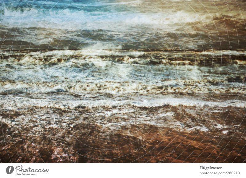 Diashow Freizeit & Hobby Ferien & Urlaub & Reisen Tourismus Ausflug Abenteuer Ferne Wellen Küste Seeufer Flussufer Strand Bucht Nordsee Ostsee Meer kämpfen nass